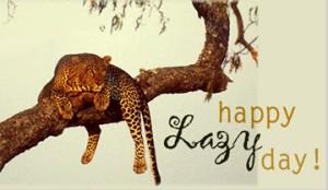 happy lazy day